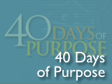 40 Days of Purpose
